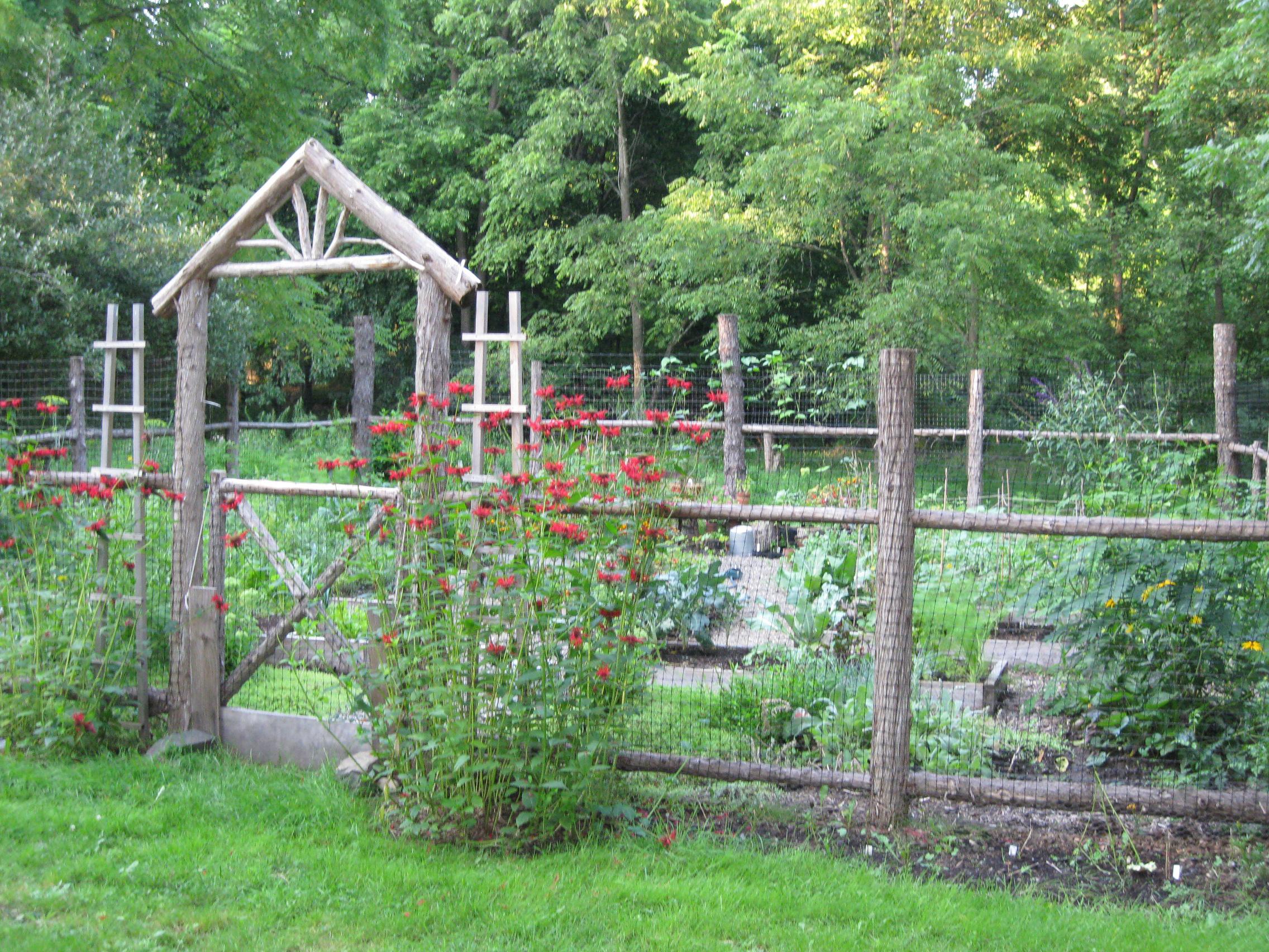 backyard ve able garden design ideas okbu design on vine