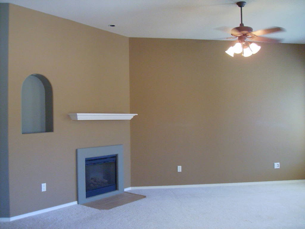 What Colour To Paint Living Room Colors To Paint Living Room Design On Vine