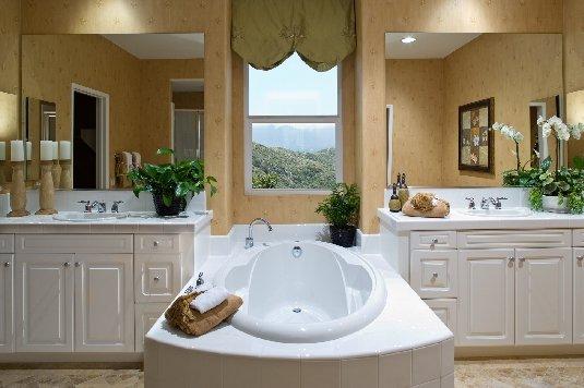 Luxury master bathroom ideas design on vine - Decorating ideas for master bathrooms ...