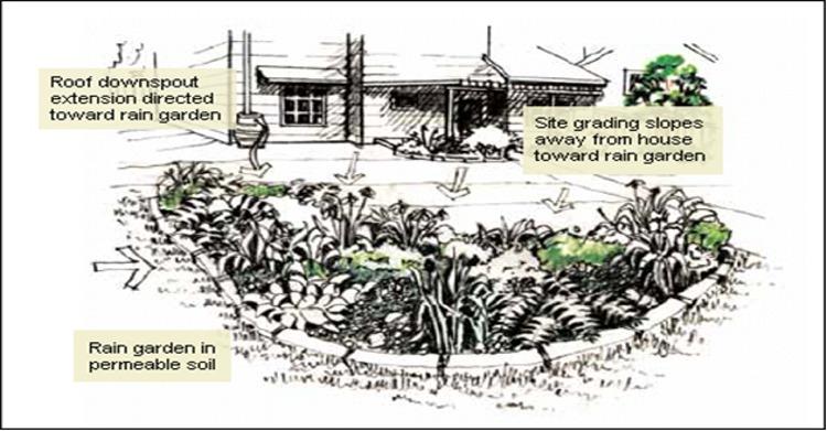 rain-garden-design-dDob - Design On Vine on rain garden drawings, vegetable garden design sketch, rain garden construction plan view,