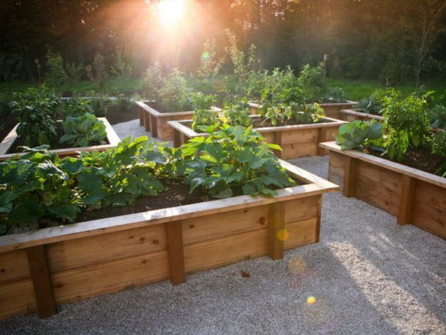 raised-garden-bed-design-ideas-OmHG - Design On Vine