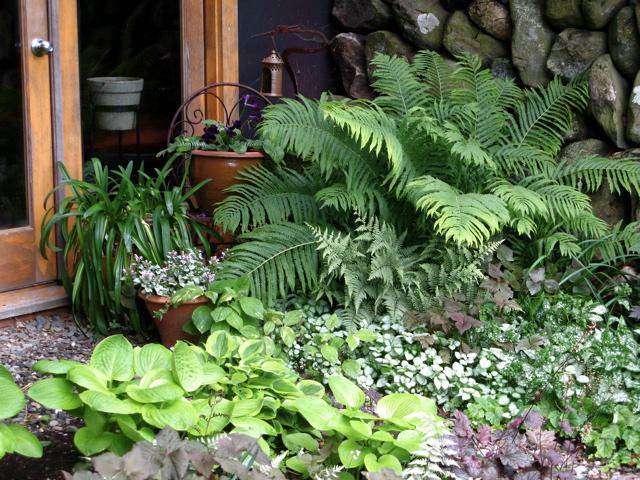 Shade Garden Design Plans BVev