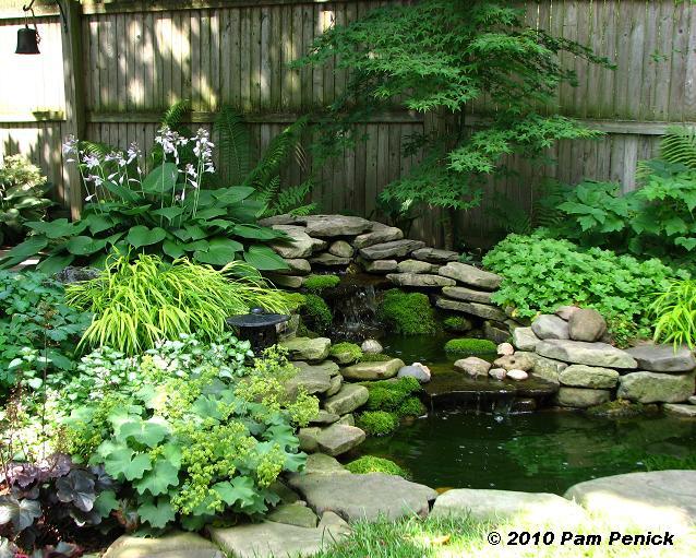 exceptional shade garden ideas Part - 10: exceptional shade garden ideas awesome ideas