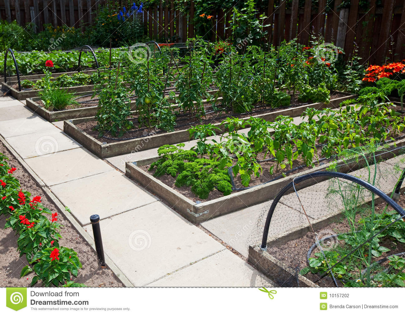Vegetable Garden Design Raised Beds FcyP
